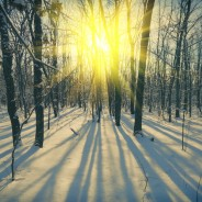 Depression and Winter Blues? 10 Tips for Coping